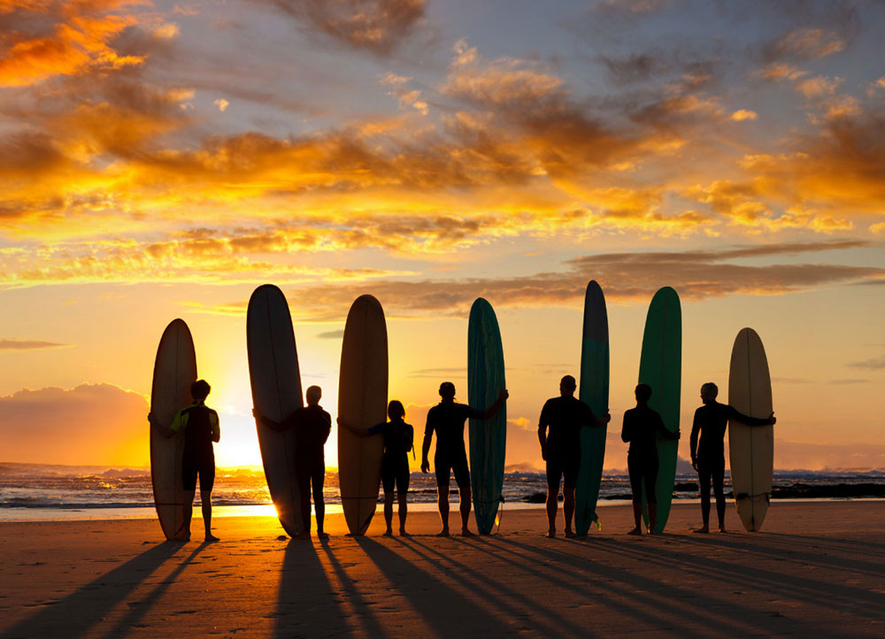 Malibu Surfers